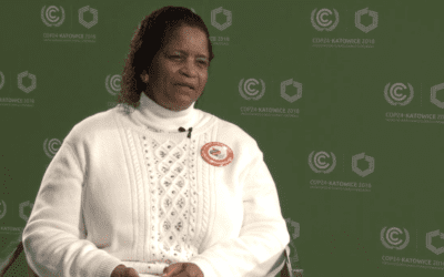 WATCH NOW: NAACP Represents Communities of Color at United Nations Climate Conference in Poland